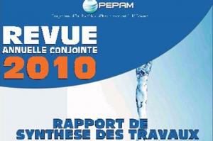 Programme Eau Potable et Assainis sement du Millenaire (PEPPAM), revue annuelle conjointe 2010